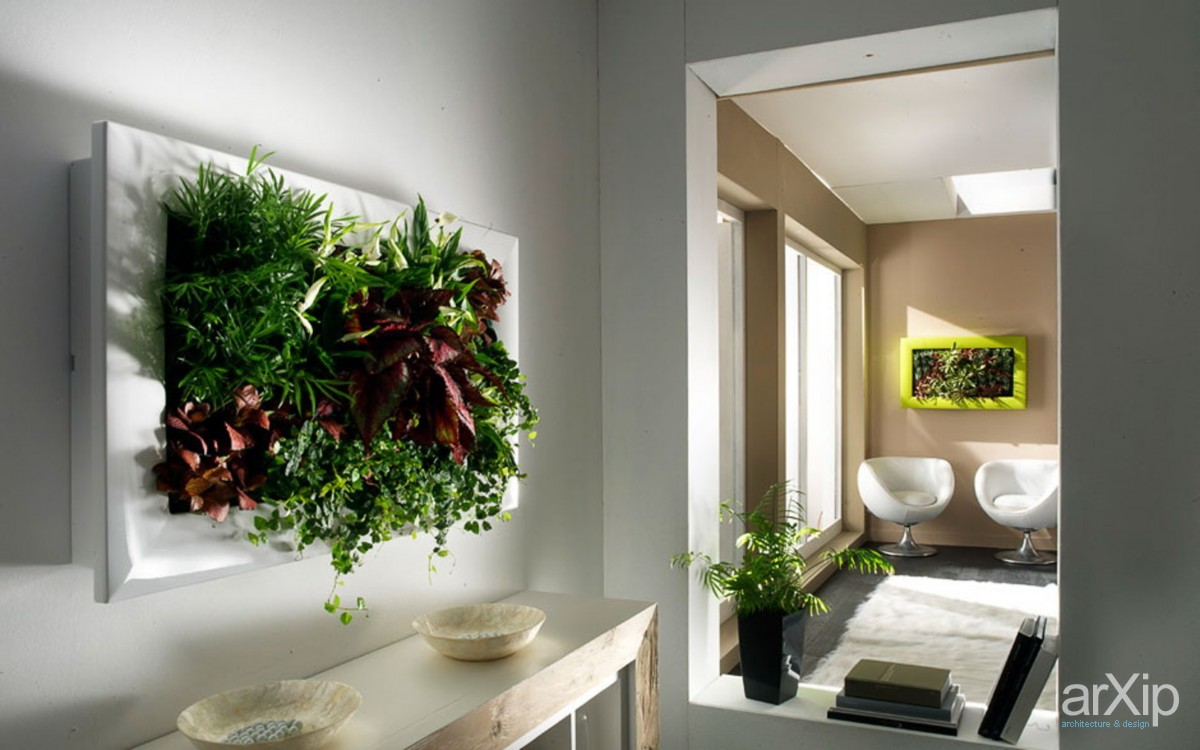 Живые цветы на стене